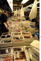 tokyo_fishmarket